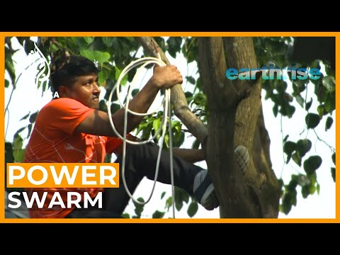 Power Swarm: A revolutionary approach to solar microgrids   earthrise
