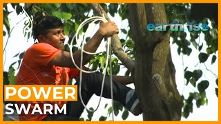 Power Swarm: A revolutionary approach to solar microgrids | earthrise