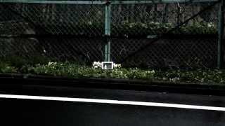 カイモクジショウ / BUSKET (MV)
