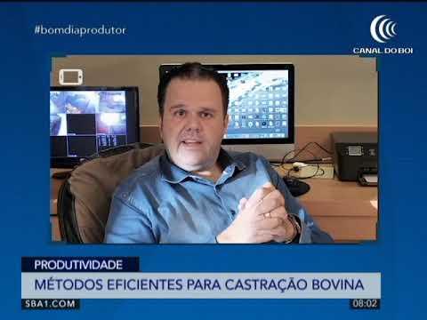 ESPECIALISTA ESCLARECE MÉTODOS PARA CASTRAÇÃO BOVINA.