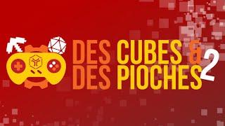 Inside Convention Minecraft - Des cubes et des pioches 2