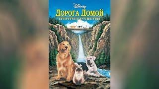 Дорога домой Невероятное путешествие (1993)