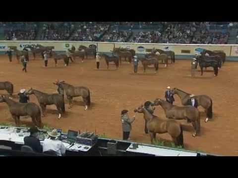 2012 AQHA World Championship Show, Part 1
