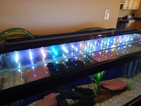 5 best led lights for planted freshwater aquariums 2019 top picks
