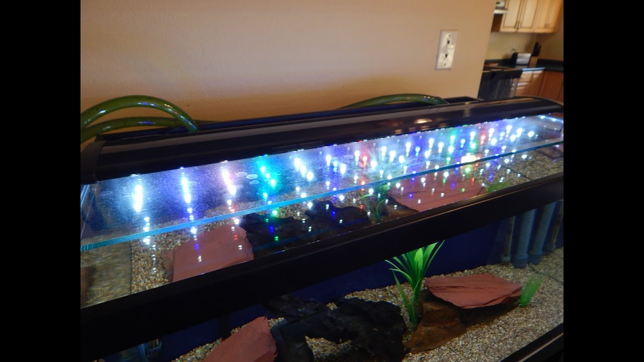 36 Led Aquarium Light 1000 Aquarium Ideas