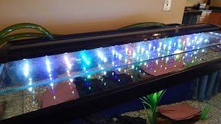 beamswork 36 ea fspec led freshwater aquarium light