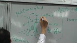 [1001海大開放式課程]魚類生理學8-2