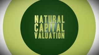 Natural Capital 2016