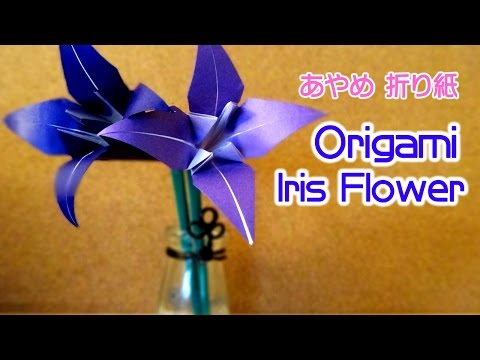 簡単 折り紙 折り紙 あやめ 折り方 : brixcms.org