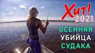 ОСЕНЬЮ ЛУЧШЕ ЭТОЙ ПРИМАНКИ НА СУДАКА НЕ НАЙТИ Ловля судака осенью на джиг Рыбалка на спиннинг 2021