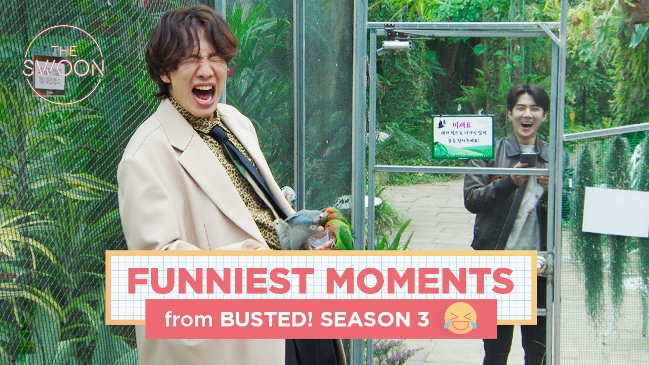 Download Funniest moments of Busted! Season 3 [ENG SUB]