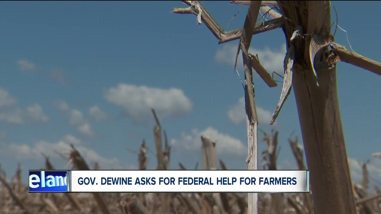 Ohio: White Farmers Seeks Disaster Declaration Hurt By Rain