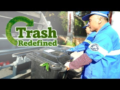 Trash Redefined: Where does all of Shanghai's sorted garbage go?