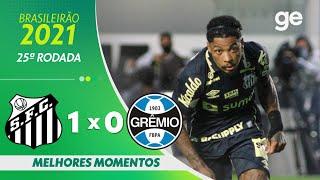 Сантос  1-0  Гремио видео