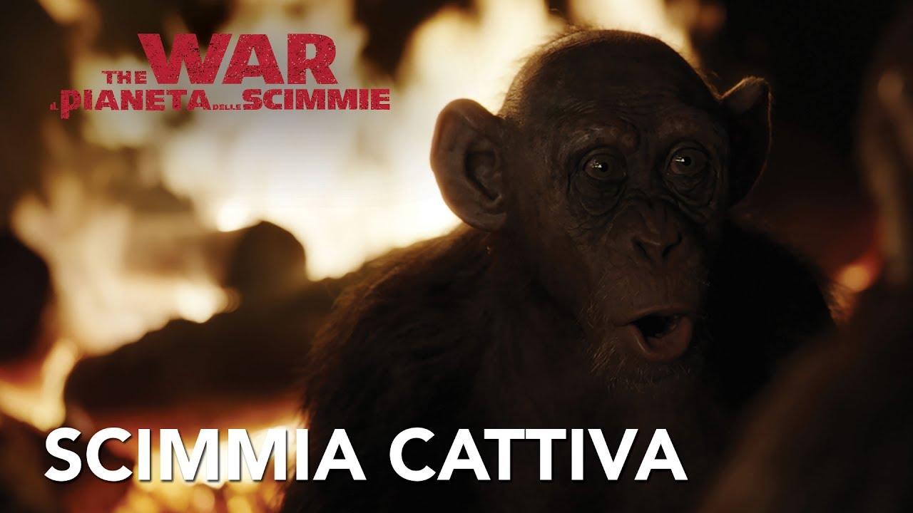 The War Il Pianeta Delle Scimmie Clip Bad Ape Hd 20th Century