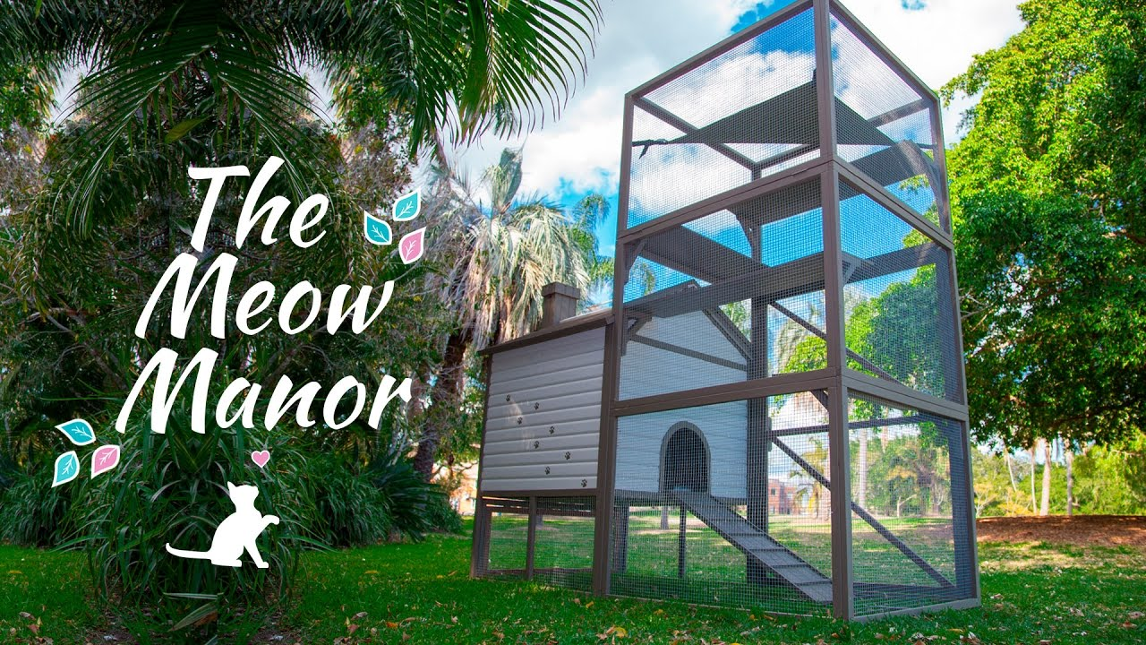 The Meow Manor A Safe And Secure Outdoor Cat Enclosure Youtube