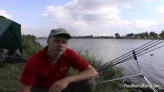 Auf Achse an der Weser - Zander und Karpfen