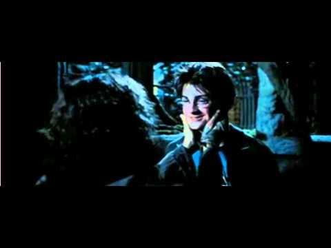Sirius y Harry Quienes nos aman.....