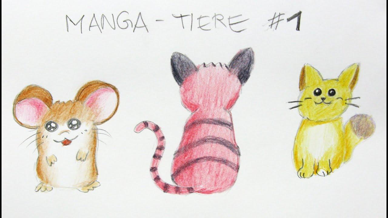 Manga Tiere Zeichnen Lernen 1 Einfache Tiere Manga Zeichenkurs