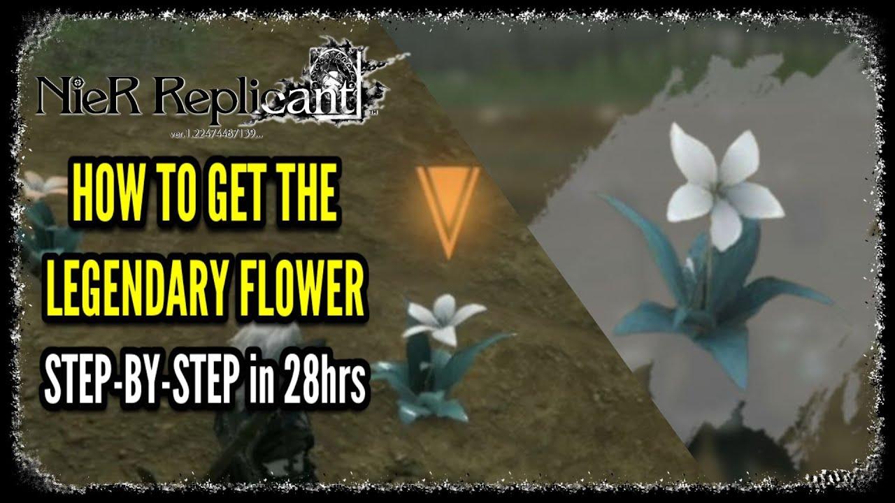 How to Get the Legendary Flower in NieR Replicant Legendary Gardener Trophy / Achievement Guide