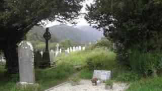 Irish Descendants - The Dublin Reel
