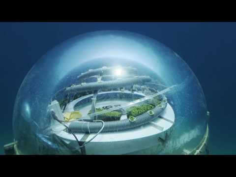 Under the Sea - A new biosphere under Italy's Ligurian coast