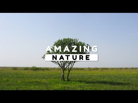 Beautiful Nature Video in Full HD - The Lifestyle of the Village People Episode 2 - 10 Minute
