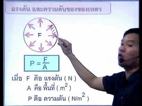 phy 17 ของไหล ความดันของของเหลว1_(1)