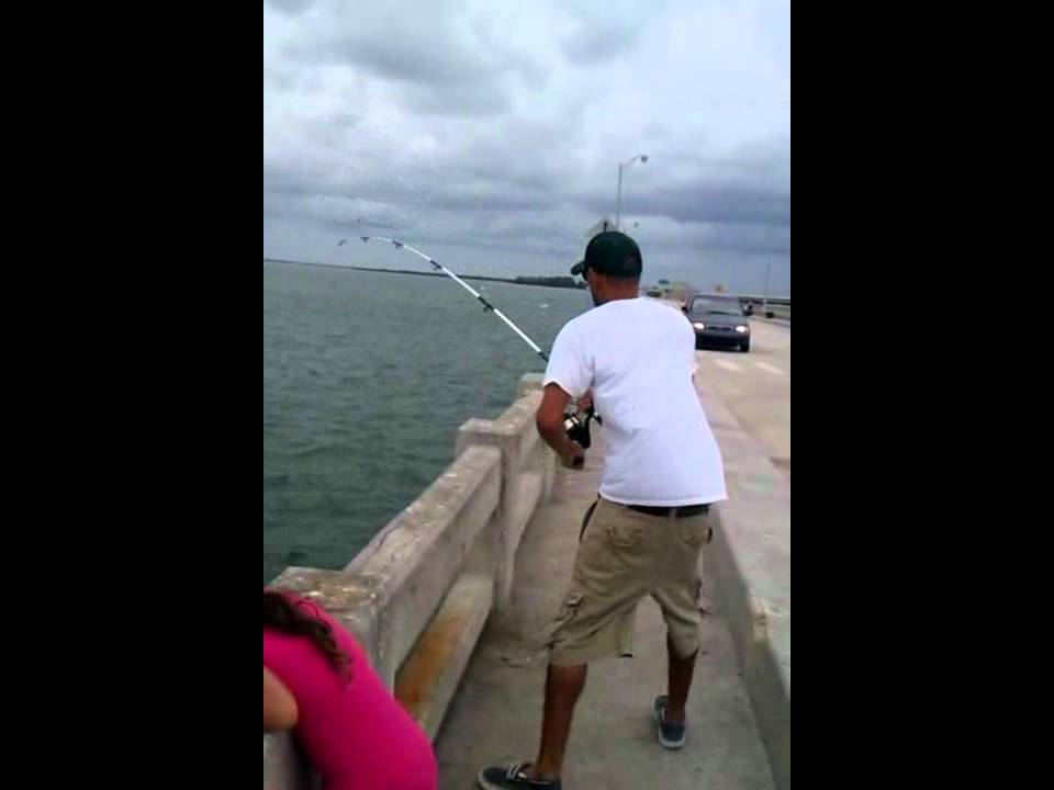 Stingray fishing skyway pier tampa bay dk status youtube for Skyway fishing pier fishing report