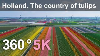 360, Holland. The country of tulips. 5K aerial video