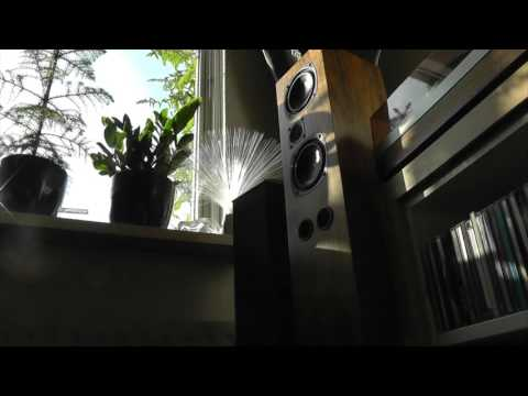 bns sds 80 original speakers vs custom build cabinets with the same Peerless drivers and filter
