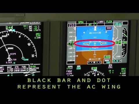 E 175 Flight Director