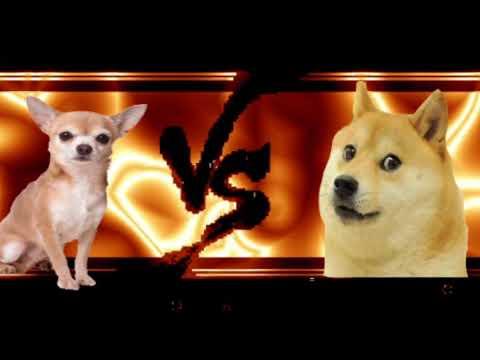 Chihuahua VS. Doge movie trailer2