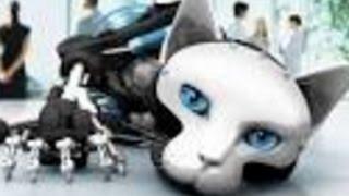 Банано-Новости: кошка-робот тоже должна родить хотя бы один раз