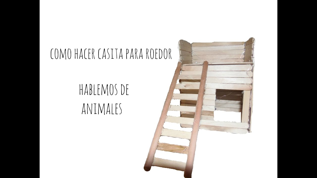 Como hacer casita para roedor hablemos de animales youtube for Casitas de madera