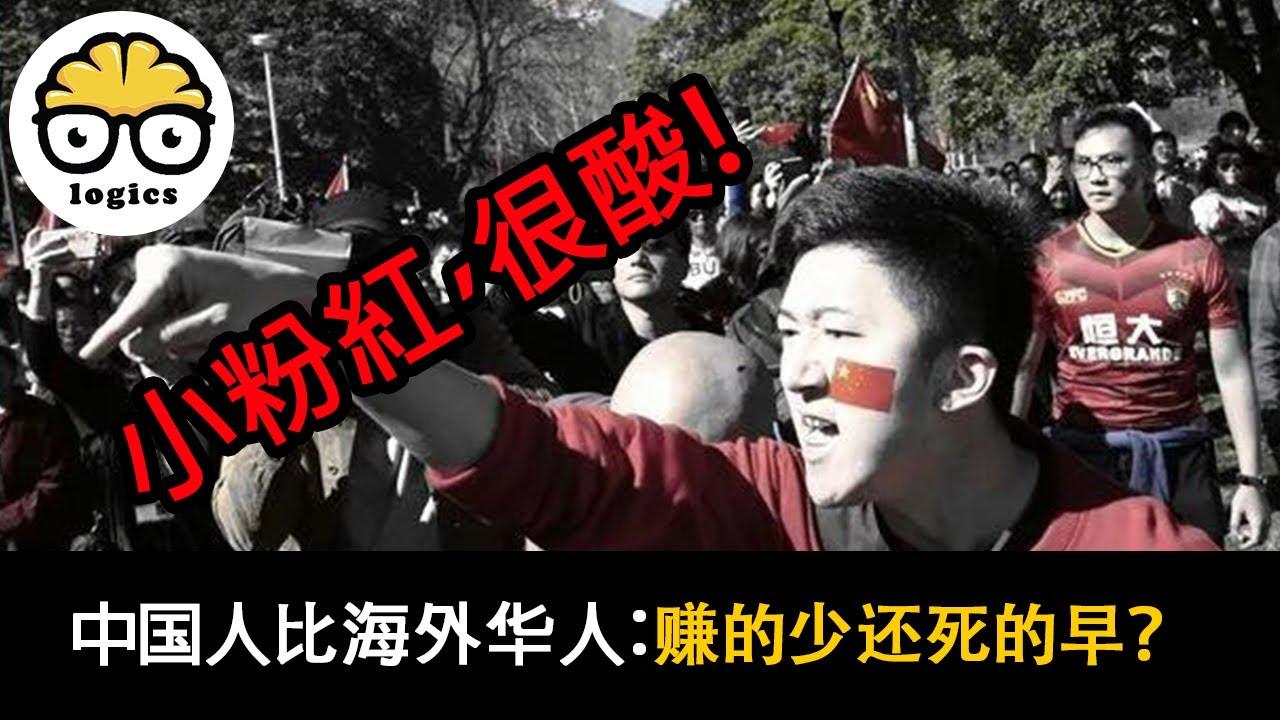 用数据说话:海外华人是二等公民?没有祖国,你什么都不是?