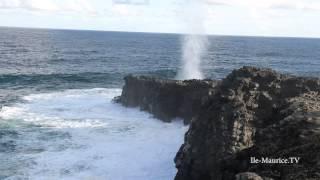 Video Le souffleur à l' Ile Maurice download MP3, 3GP, MP4, WEBM, AVI, FLV Januari 2018