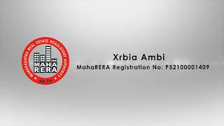 Xrbia Ambi July 2017 Newsletter