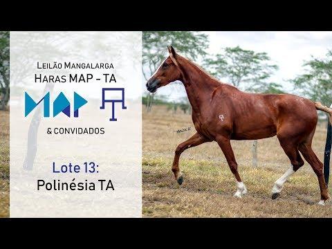 Polinésia TA