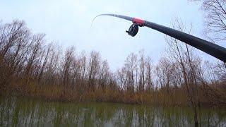 НЕ ДУМАЛА ЧТО ЛЕСНОЕ ОЗЕРО РАЗДАЕТ Рыба идет на поплавок Рыбалка весной 2021