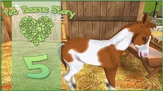Pet Rescue Story || Foal For Adoption!! - Episode #5