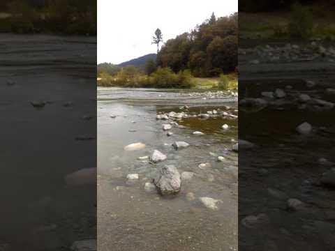 Trinity River #1