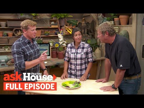 Ask This Old House | Microgreens, Elevator (S15 E9) | FULL EPISODE