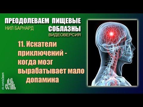 11 Когда мозг вырабатывает мало допамина (Преодолеваем пищевые соблазны)