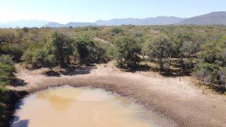PR2131 1200 Ha Game ,Cattle Farm Thabazimbi Dwaalboom Limpopo