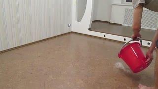 видео Пробковый пол - плюсы и минусы напольного покрытия