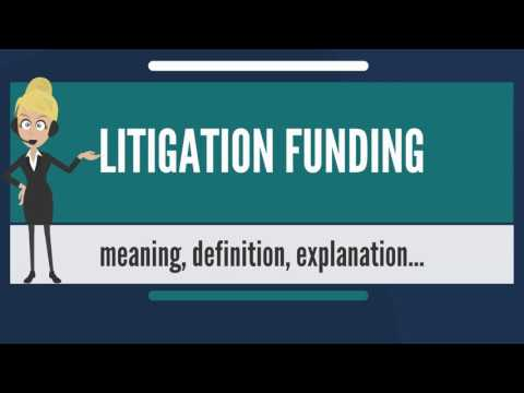 What is LITIGATION FUNDING? What does LITIGATION FUNDING mean? LITIGATION FINDING meaning