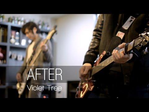 바이올렛트리 바이올렛트리 - After (Studio live ver.) M/V