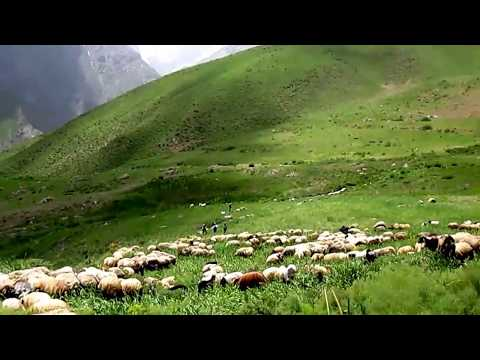TERK EDİLMİŞ CENNETE DÖNÜŞ: Bayé [ Çevre köyü1995 - 2013]