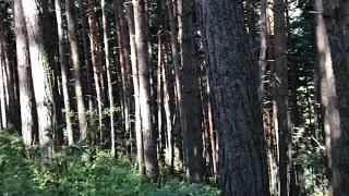 Green Rocky Mountains secret lake of Almaty in Kazakhstan 2018